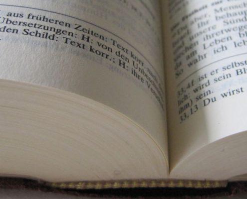 Foto: Wilhelmine Wulff / pixelio.de
